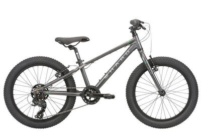 2020 Haro Flightline 20 Plus Charcoal Green - Pitcrew.nz