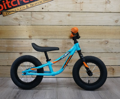 Avanti Little Ripper 12