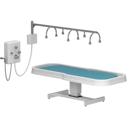 Neptune Massage Table/Vichy Shower Package - Touch America