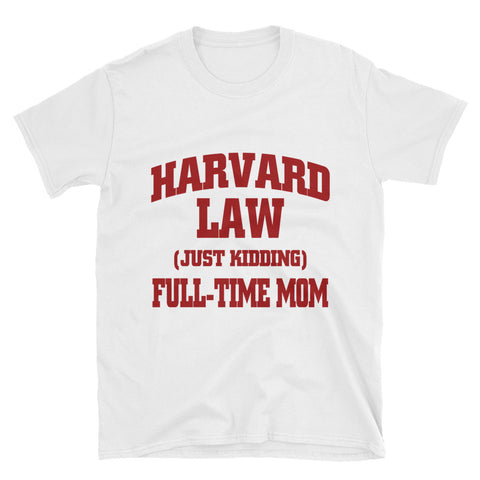 Harvard Law, Full-Time Mom