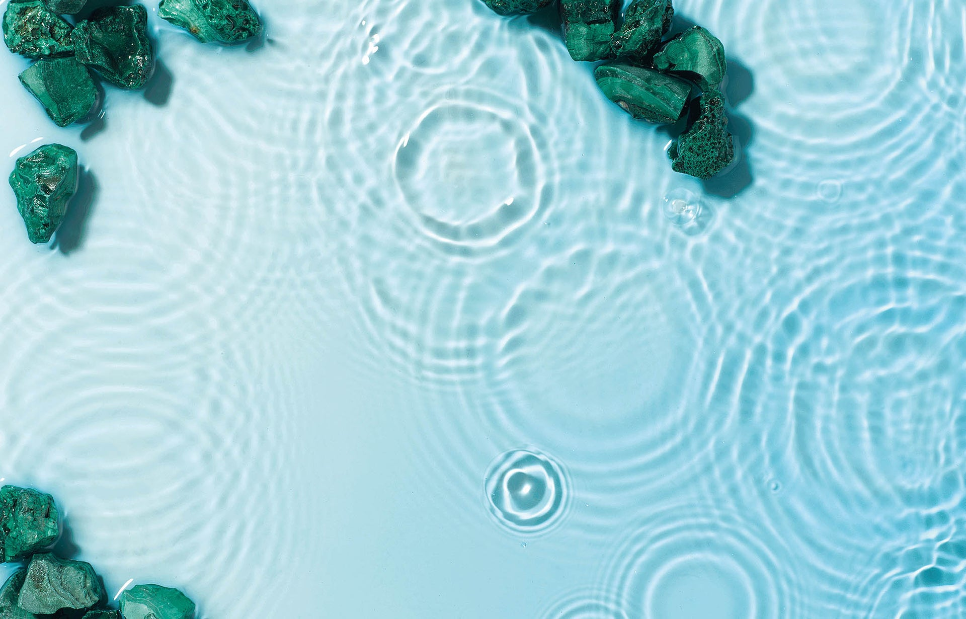 Blue Green Algae vs Blue Spirulina: what's the difference?