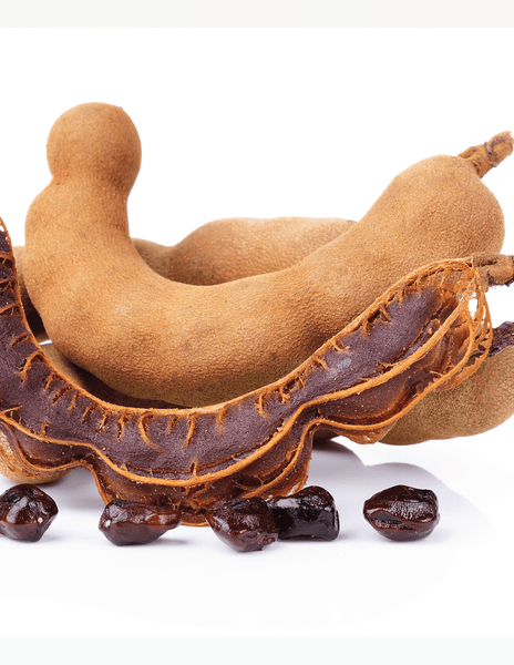 Wild Belizean Tamarind is what is used in Maya Mike's Belizean Barbacoa.
