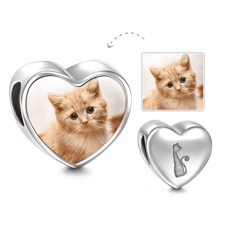 Pandora Compatible 925 sterling silver Pet Cat Heart Photo Charm Silver From CharmSA Image 1