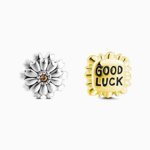 Good Luck Petite Locket Charms Set Silver From CharmSA Image 1