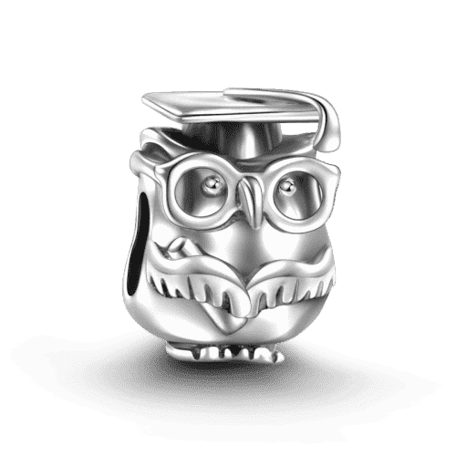 Pandora Compatible 925 sterling silver Dr.Owl Charm From CharmSA Image 1