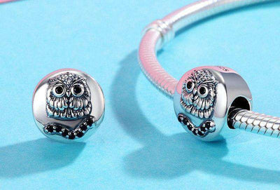 Cute Owl Animal Collection Round Shape Charm