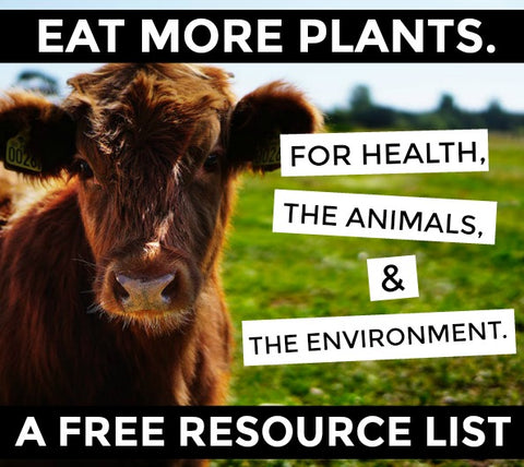 Plant-Based Resource Guide (A Free Guide)