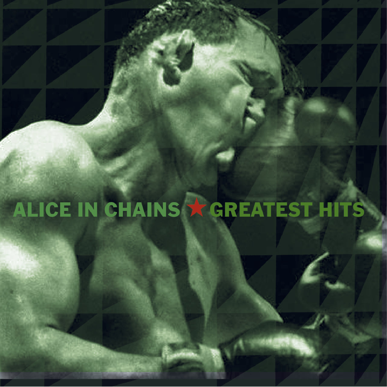 Alice In Chains : Greatest Hits  CD