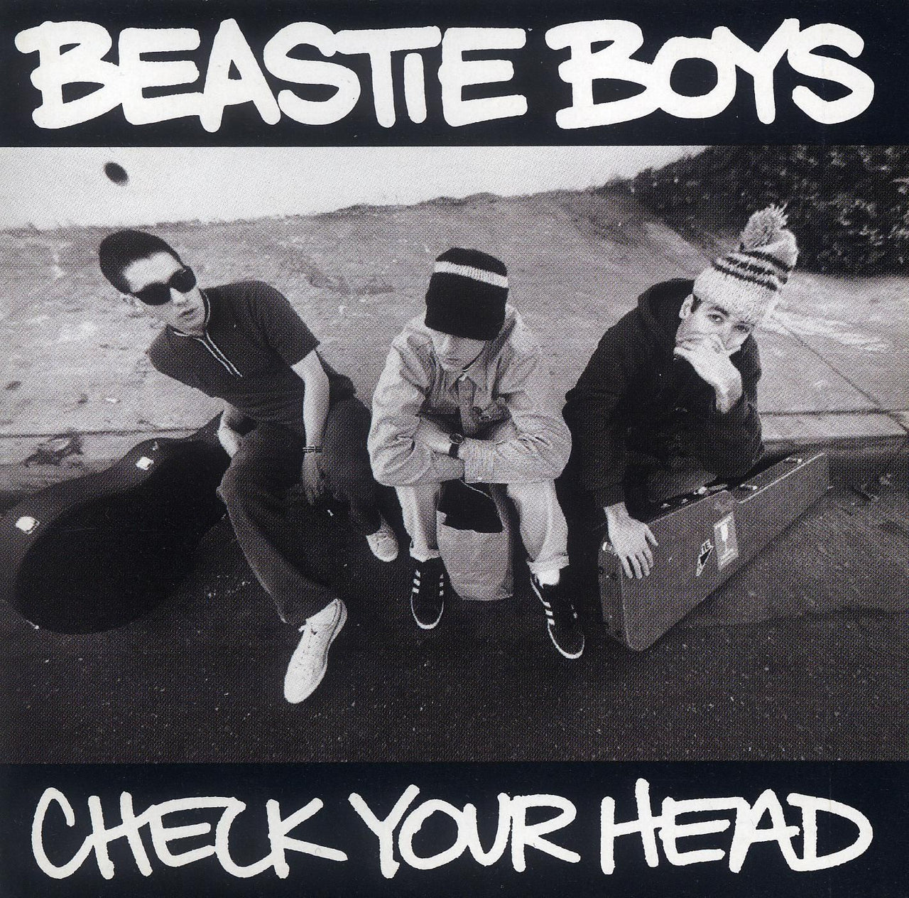 Beastie Boys : Check Your Head  LP