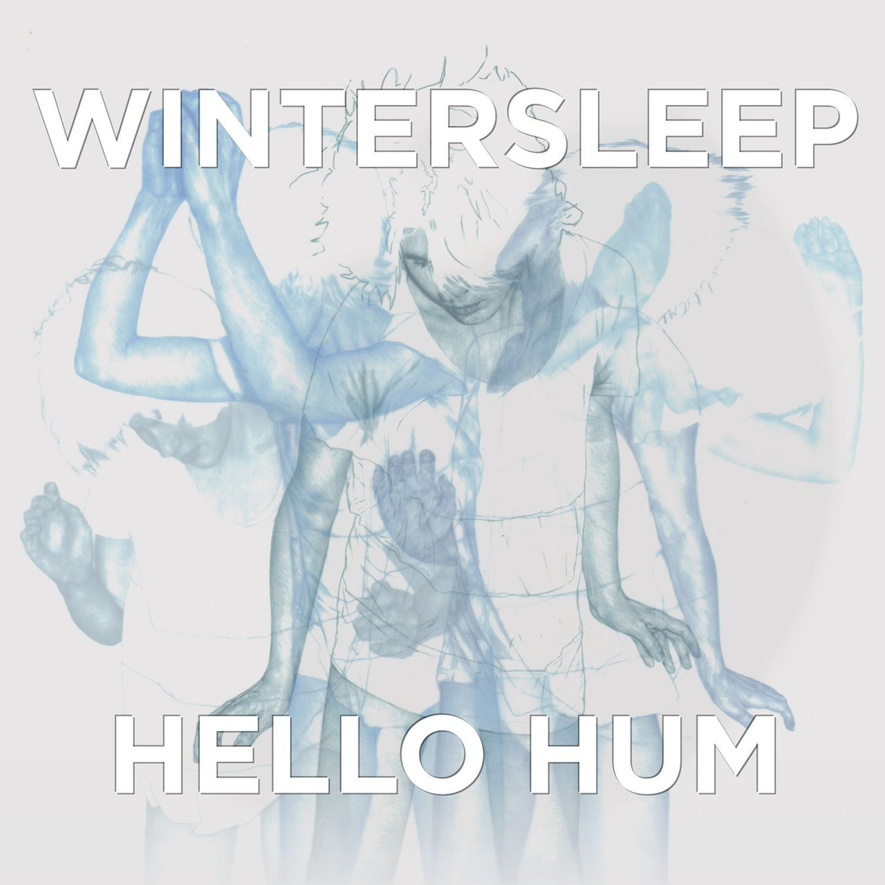 Wintersleep : Hello Hum  CD