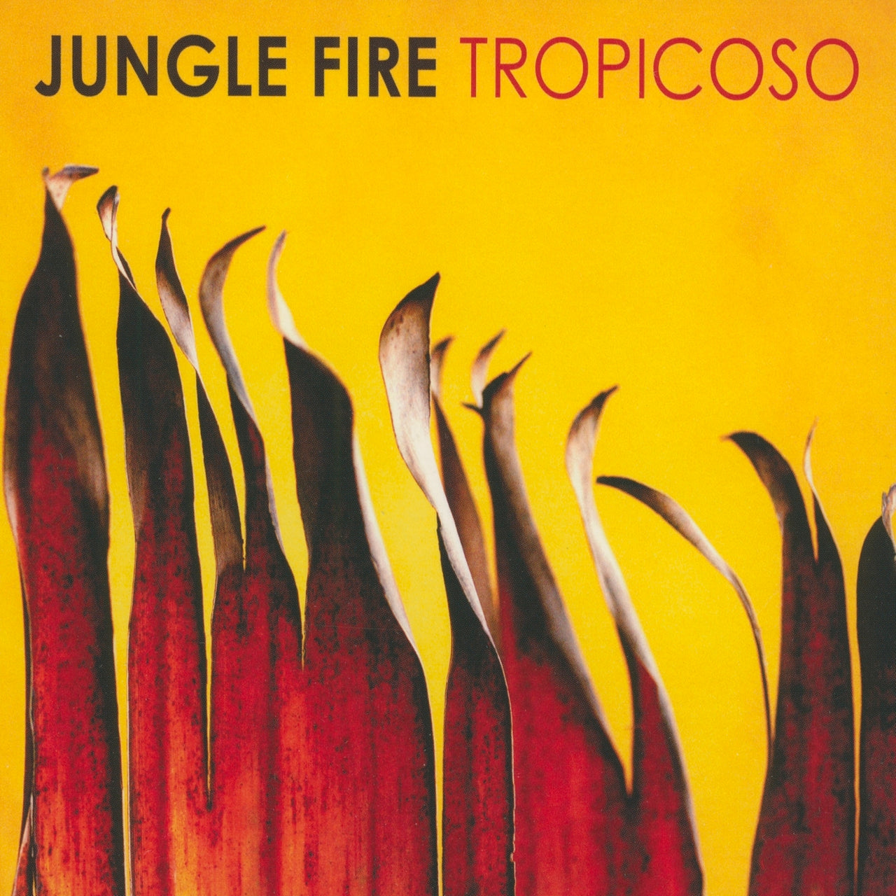 Jungle Fire : Tropicoso  CD