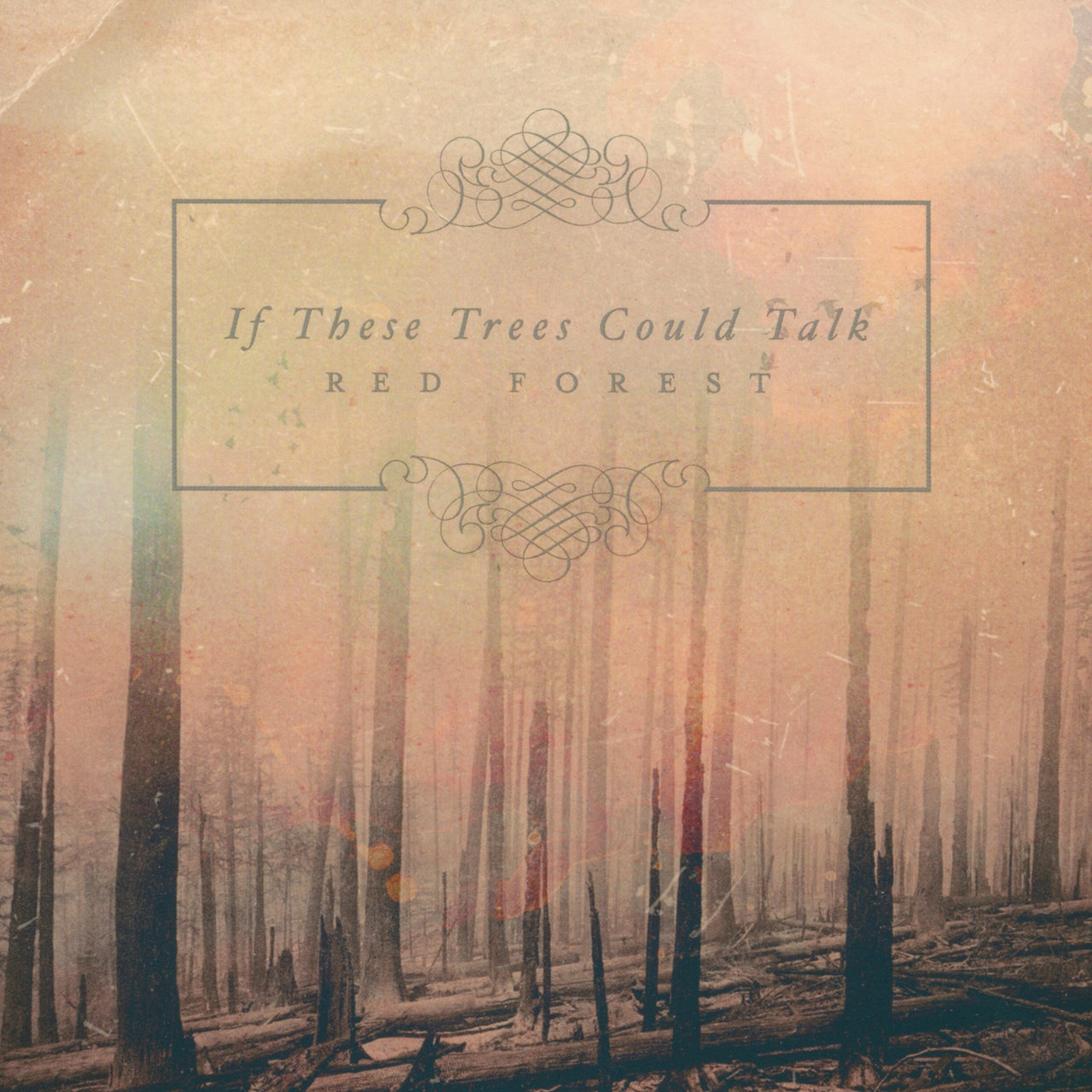 If These Trees Could Talk : Red Forest  CD