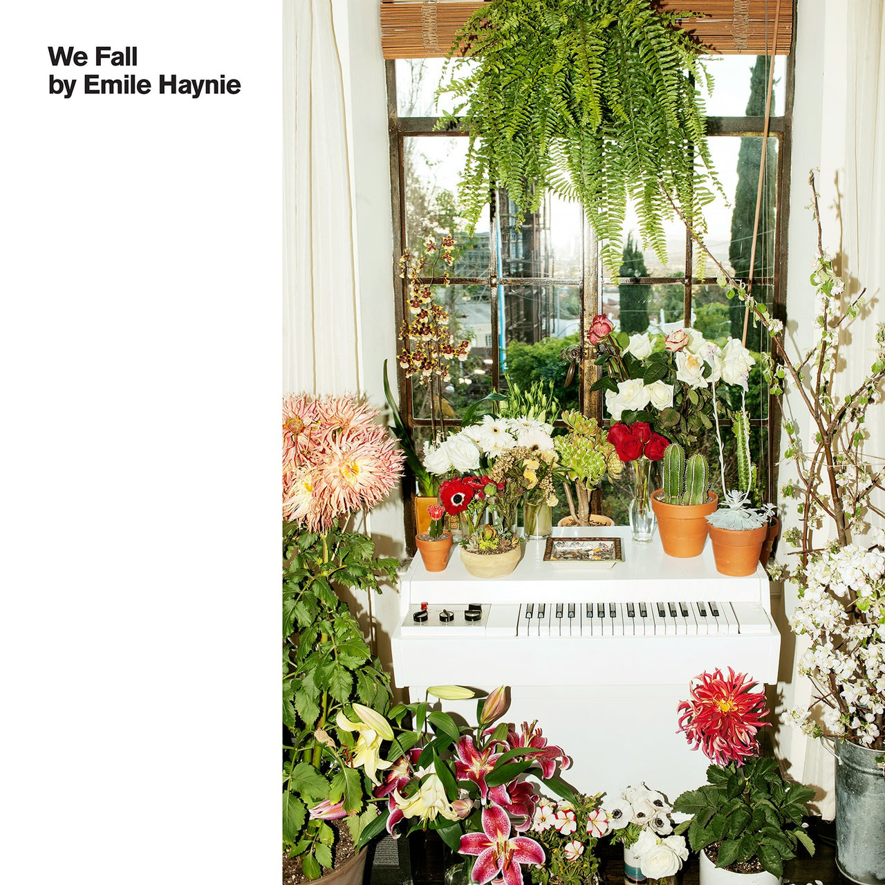 Haynie, Emile : We Fall  CD