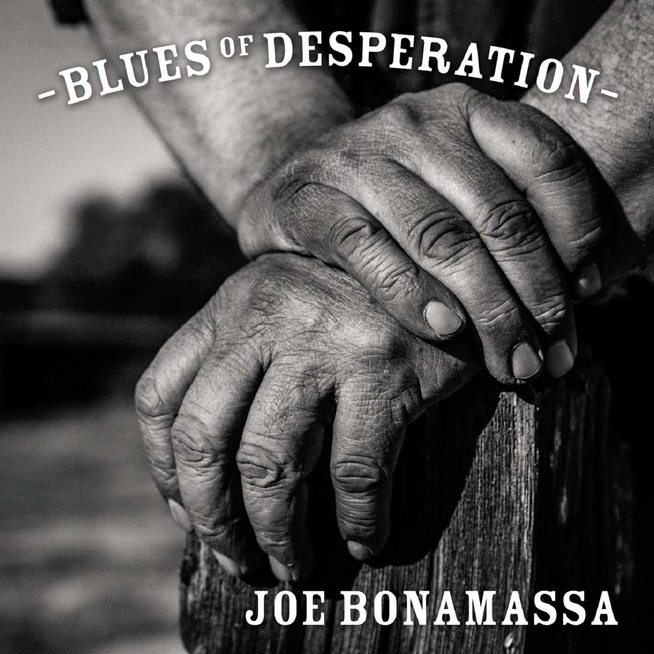 Bonamassa, Joe : Blues Of Desperation  CD