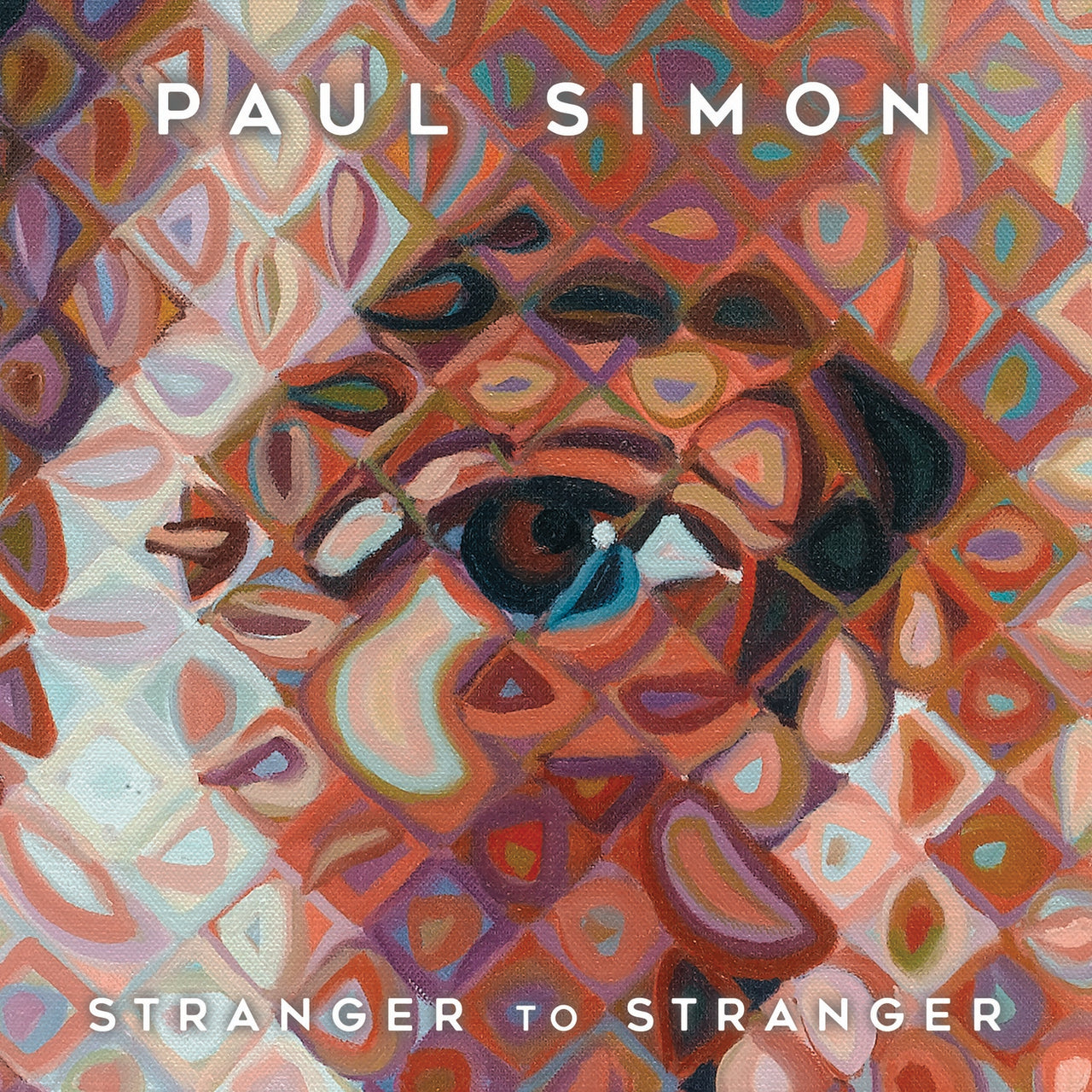 Simon, Paul : Stranger To Stranger  CD