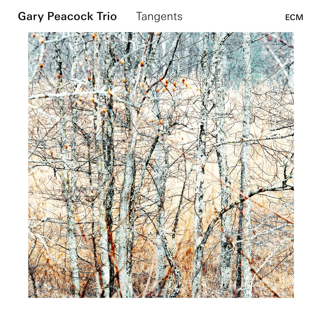 Peacock, Gary : Tangents  CD