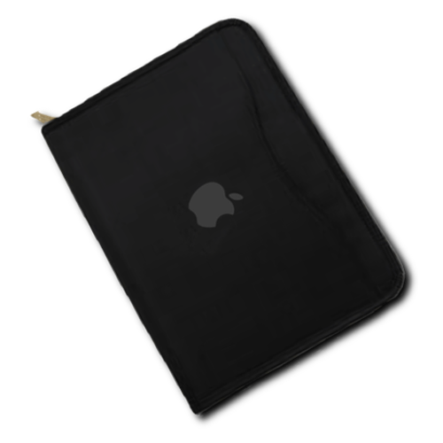 Large Apple Portfolio