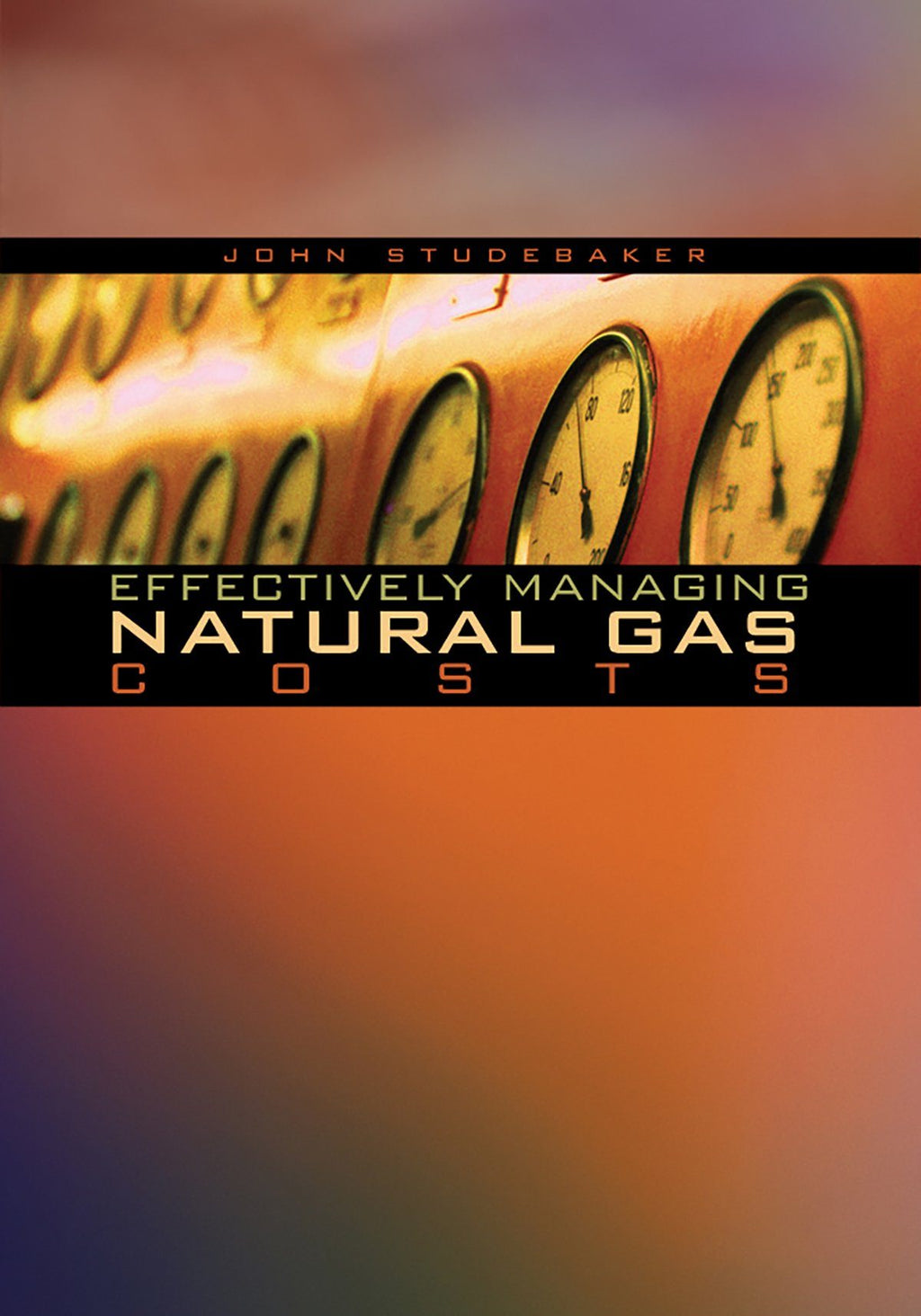 Effectively Managing Natural Gas Costs - AEE Programs