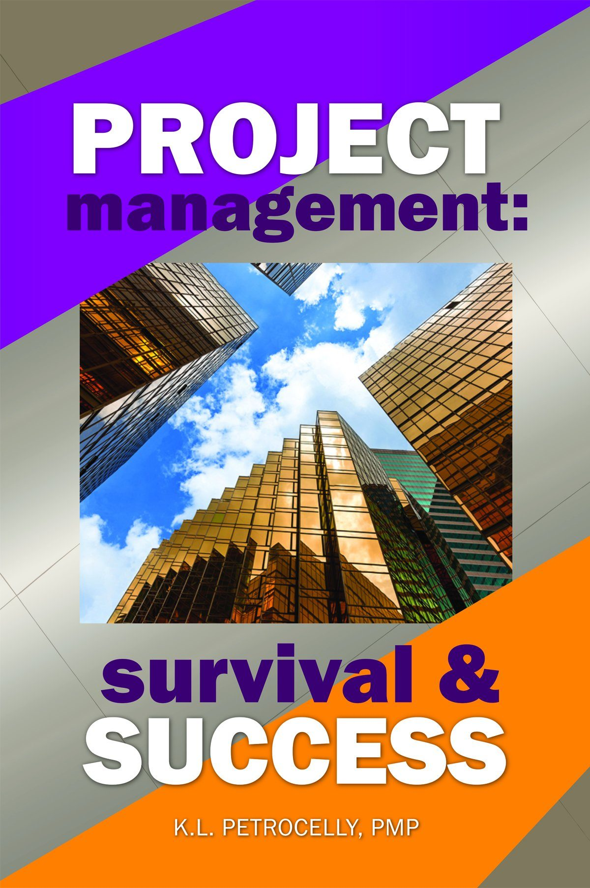 project management survival and success aee programs