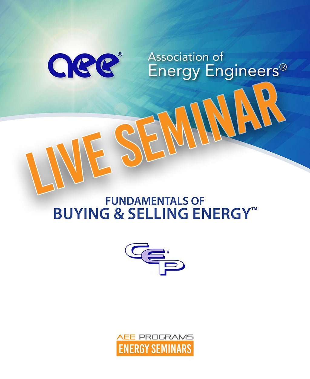 Fundamentals Of Buying And Selling Energy™ - AEE Programs