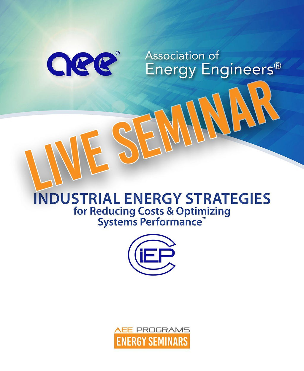 Industrial Energy Strategies For Reducing Costs & Optimizing Systems Performance™ - AEE Programs