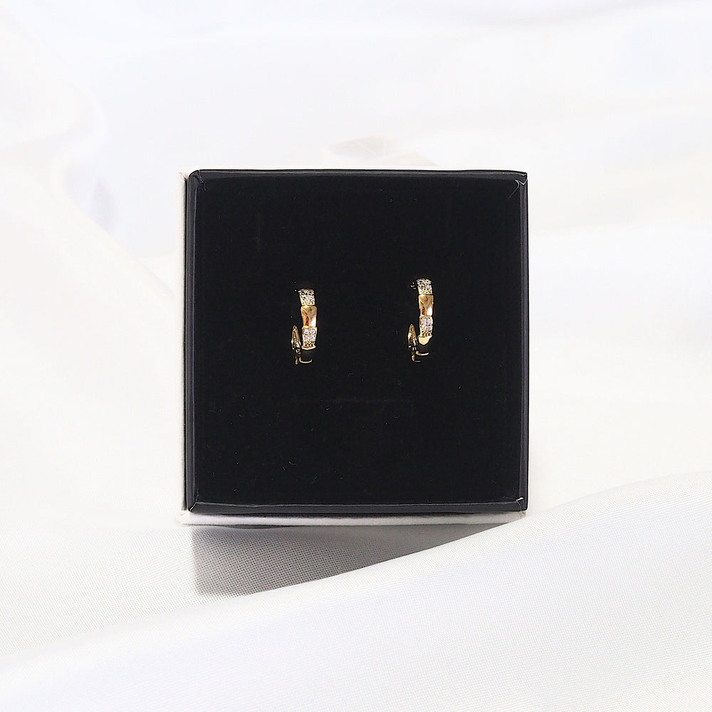 [SET OF 2] The Cesca Semi Hoop Earrings (925 Silver Stud)
