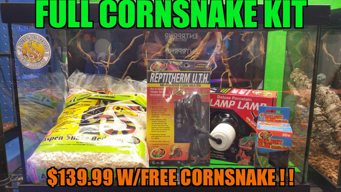 Cornsnake Kit