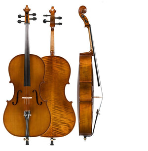 Amati Model #95 Cello Outfit