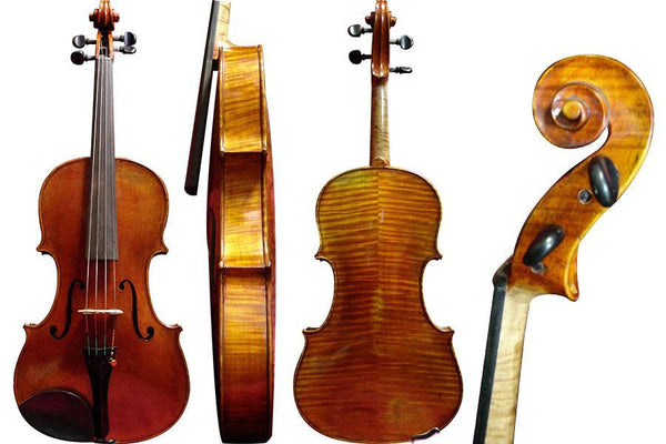 Darche Freres Viola overall view from front, side, back and scroll from the side