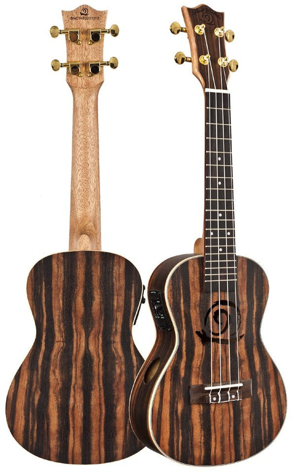 Amahi Electric Snail Concert Ukulele Ebony Model