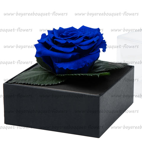 PRESERVED ROSE GIFT BOX ROYAL BLUE