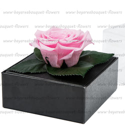 PRESERVED ROSE GIFT BOX BLUSH PINK