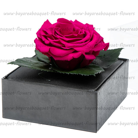 PRESERVED ROSE GIFT BOX FUTURE PINK