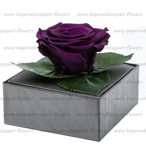 PRESERVED ROSE GIFT BOX DARK PURPLE
