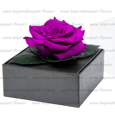PRESERVED ROSE GIFT BOX PURPLE