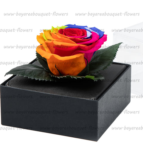 PRESERVED ROSE GIFT BOX RAINBOW