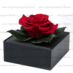 PRESERVED ROSE GIFT BOX CLASSIC RED