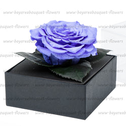 PRESERVED ROSE GIFT BOX VIOLET