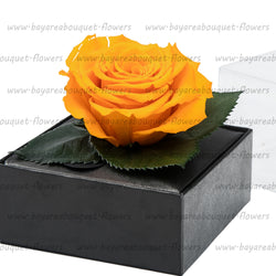PRESERVED ROSE GIFT BOX ORANGE