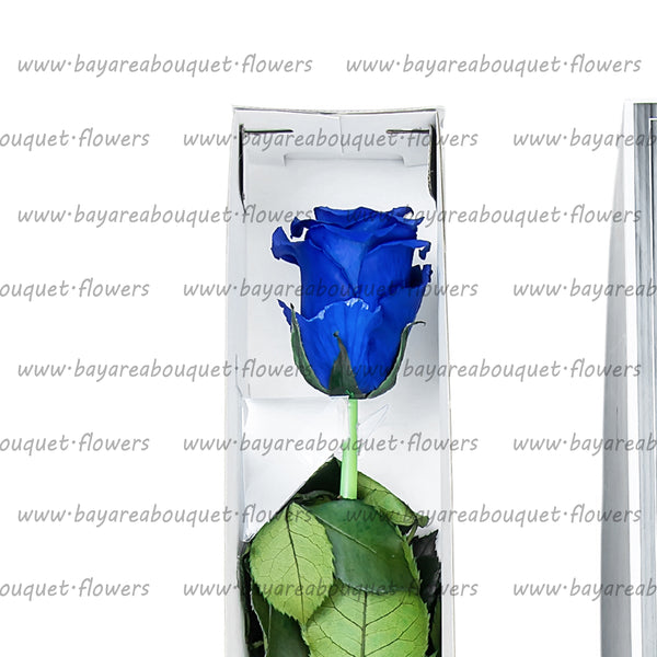 PRESERVED ROSE SINGLE STEM ROYAL BLUE