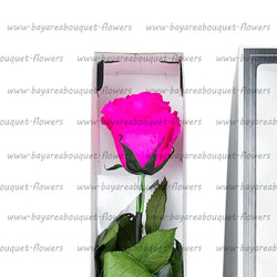 PRESERVED ROSE SINGLE STEM BRIGHT PINK