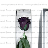 PRESERVED ROSE SINGLE STEM DARK PURPLE