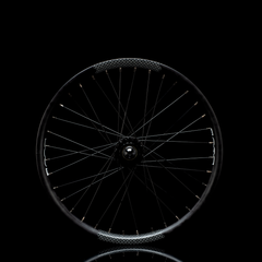 DUO Brand R2 Rear Wheel