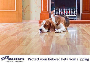 Is Your Dog Slipping on the Floors in Your Home? Find a Solution Today.