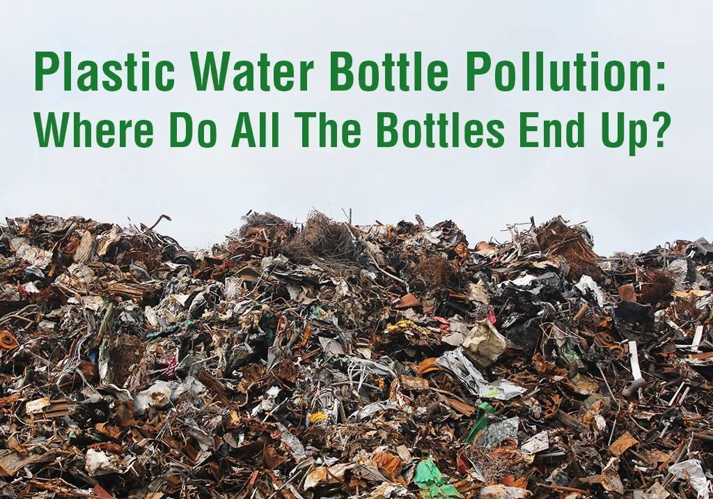 Plastic Water Bottle Pollution: Where do all the Bottles End Up?