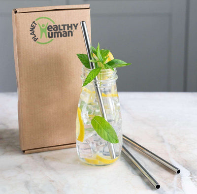 Healthy Human 3-Pack Stainless Steel Straw Set