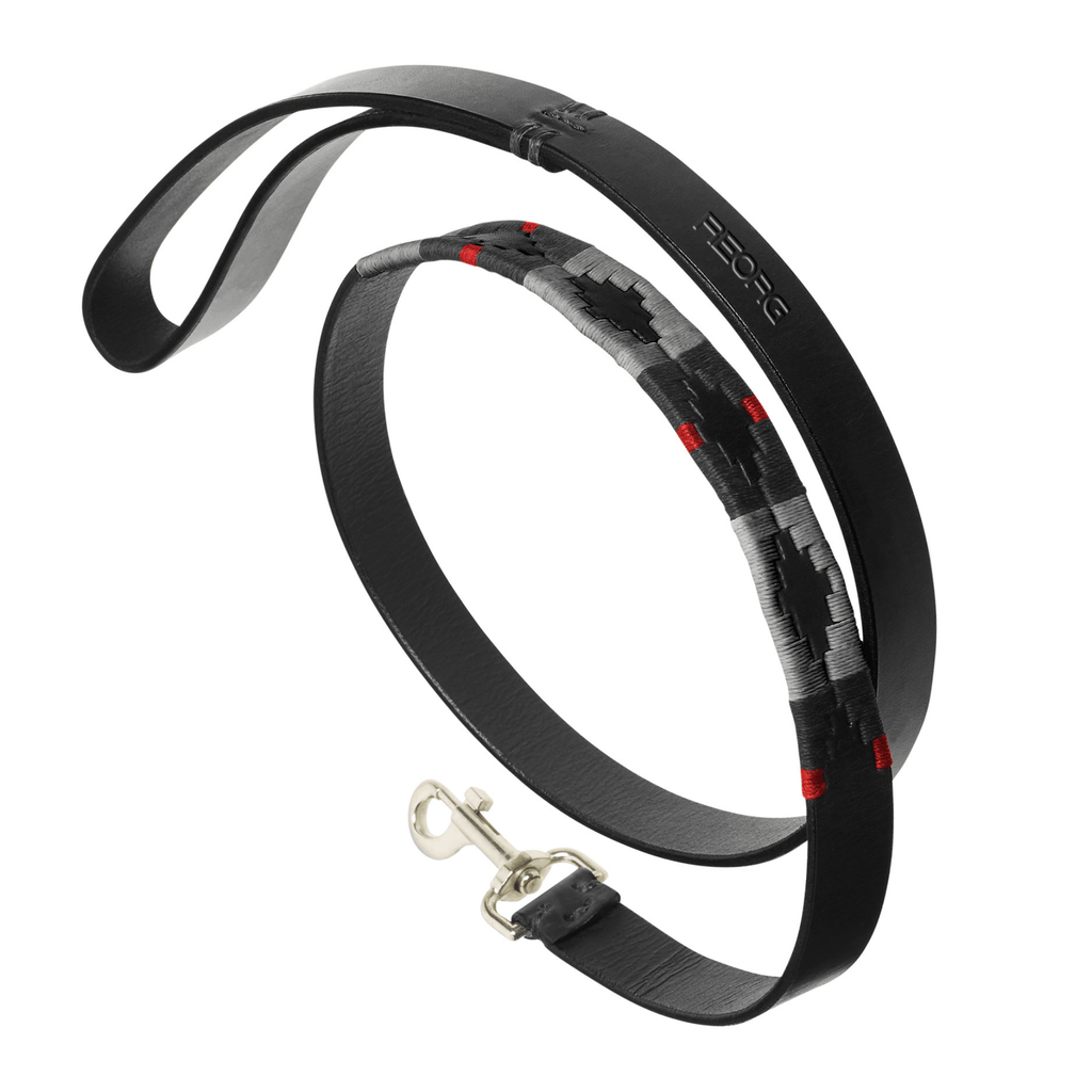 FIRE SERVICE - REORG LEATHER DOG LEAD