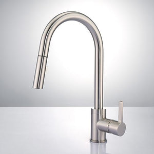 Ardara Single-Hole Pull-Down Kitchen Faucet