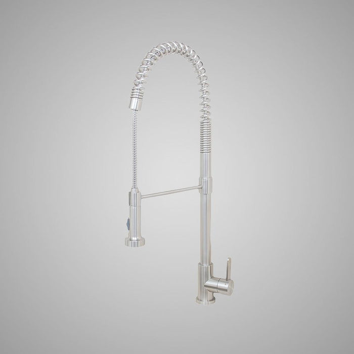 Danforth Kitchen Faucet with Spring Spout