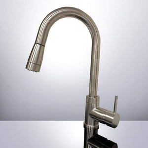 Delhi Single-Hole Kitchen Faucet with Pull-Down Sprayer and Swivel Spout